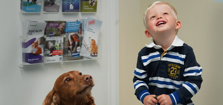 Read client testimonials for Garston Veterinary Group