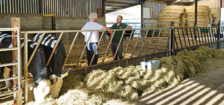 Garston Proactive Farmers for healthy herds & flocks