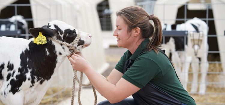 Farm Animal Registration