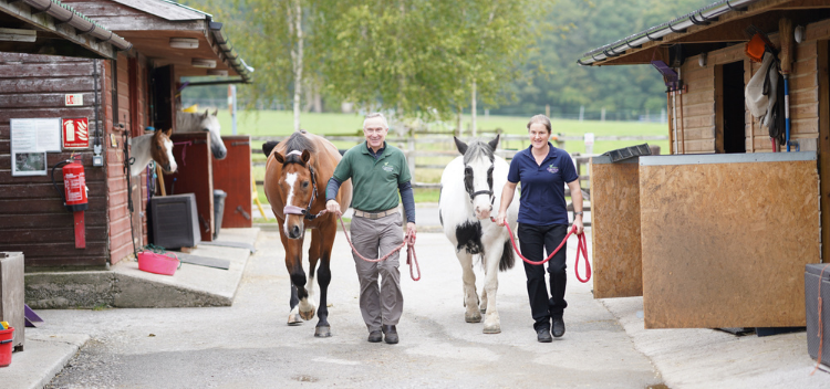 Equine healthcare news, advice & fact sheets