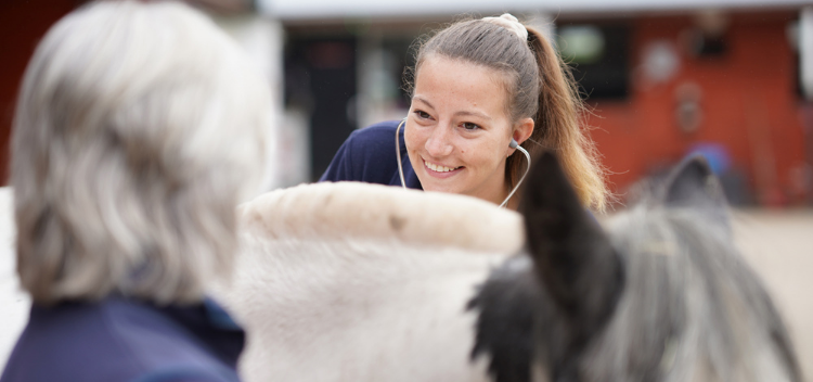 Book an Equine Zone Visit in & around Somerset & Wiltshire